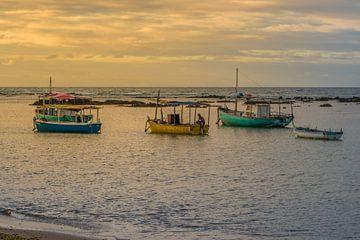 Vloot van vissers verankerd in Salvador Bahia Brazilië van Castro Sanderson