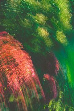 Grün Gelb Rot und etwas Violett von Jan Peter Jansen