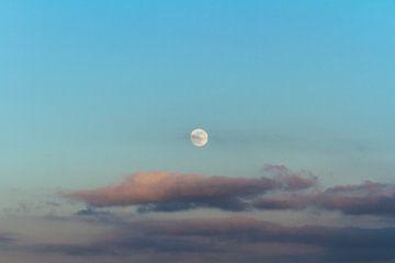De maan von Dany Tiels
