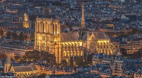 Notre Dame de Paris  van Sébastien Béhotte