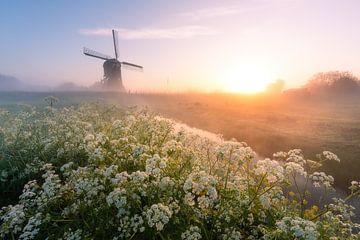 Bunter Sonnenaufgang mit holländischer Mühle von Ramon Oost