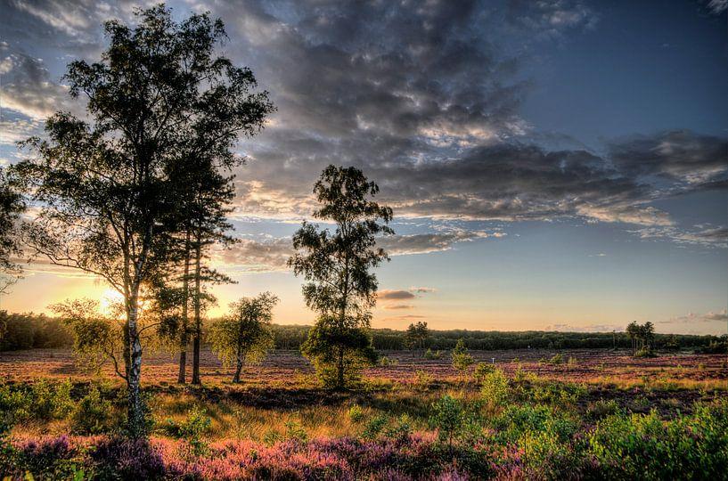 Zonsondergang Landgoed Den Treek IV Amersfoort van Watze D. de Haan