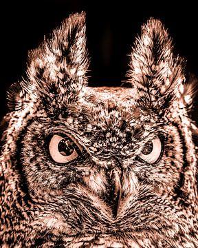 Duotone portret van een uil sur Harrie Muis