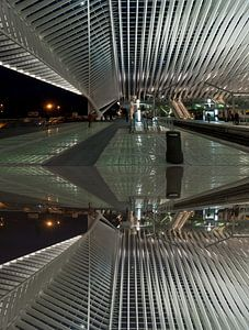 Abstract of Liege train station