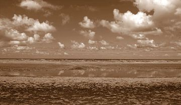 Zandvoort van Jose Lok
