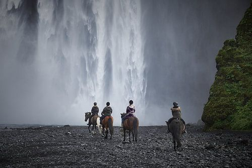 IJslandse paarden bij Skógafoss van Edwin van Wijk