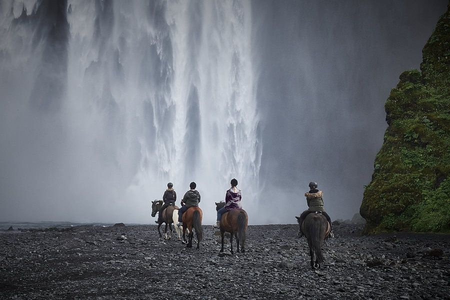 IJslandse paarden bij Skógafoss