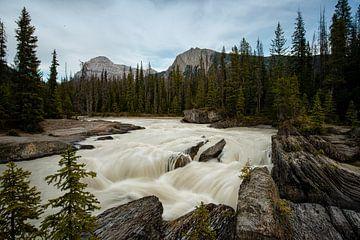 Snel stromende rivier Rocky Mountains van Nathalie Daalder