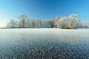 Bevroren meer met berijpte bomen