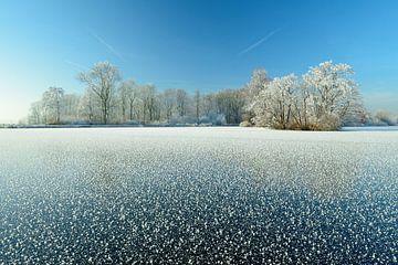 Bevroren meer met berijpte bomen van