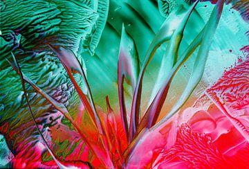 Achtsame Farben 30 von Terra- Creative