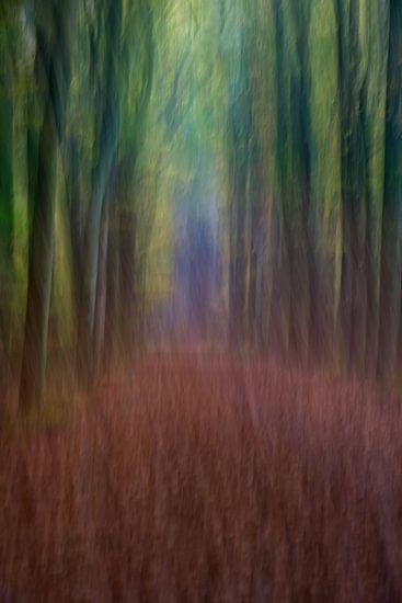 Dansende bomen. van Francis Dost