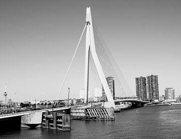 Erasmusburg Rotterdam von Anuska Klaverdijk