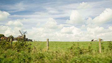 Windmolen van Appelterre  van Ronald De Neve