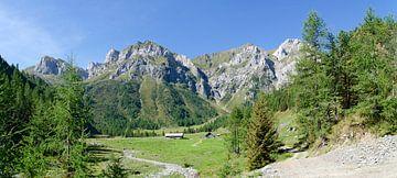 Frohnalp at Carnic alps van Leopold Brix