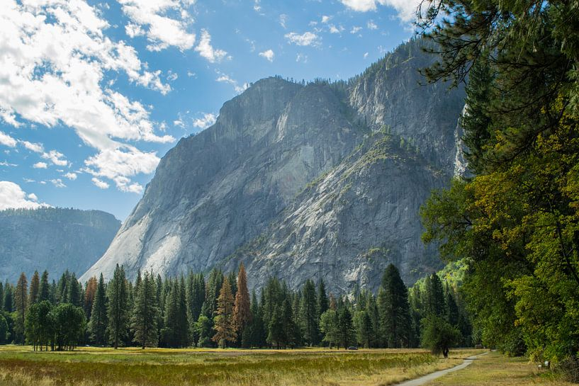 Yosemite National Park van Tashina van Zwam