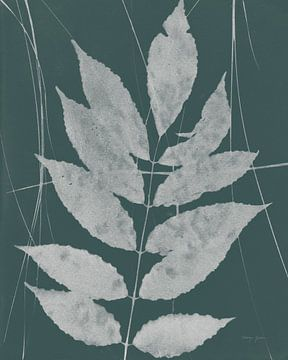 Enchanted Fall Cyanotype IX, Nancy Green van Wild Apple