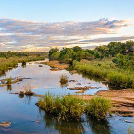 Skukuza, Krugerwildtuin van Carla Matthee