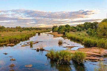 Skukuza, Krugerwildtuin
