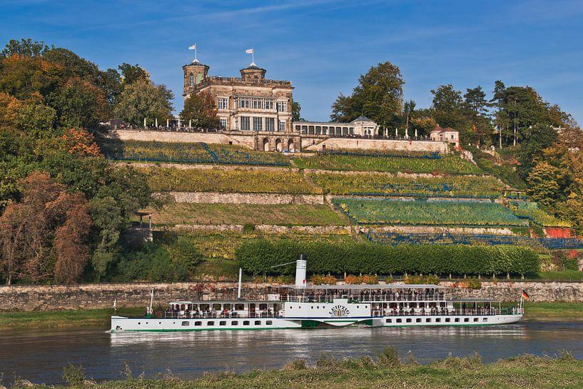 Lingnerschloss Castle, Dresden van Gunter Kirsch