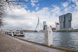 Zicht op de Erasmusbrug van Peter van Rooij