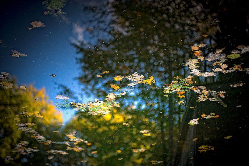 reflecies in het water van Huibert van der Meer