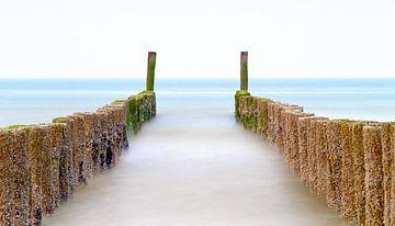 De paalhoofden aan de Zeeuwse kust van Menno Schaefer