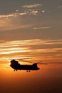 Sun Set Chinook