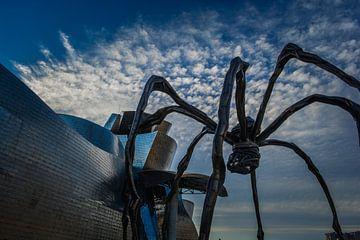 L'araignée de Bilbao sur Sanne Lillian van Gastel