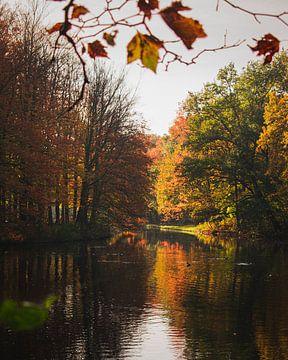 Herbst See von Jan Willem De Vos