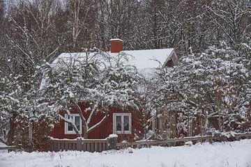 zweden288 van Geertjan Plooijer