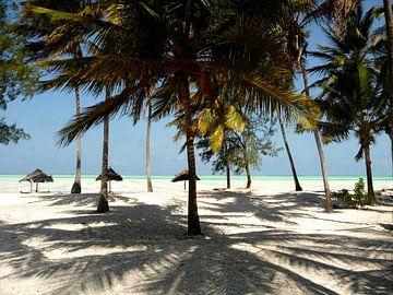 'Onder de palmen', Zanzibar van Martine Joanne