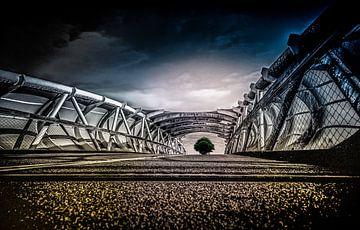 The Bridge van Marcel van Kan