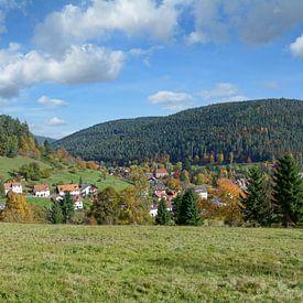 Enzklösterle im Schwarzwald von Peter Eckert