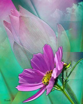 Florale Träume von Gertrud Scheffler