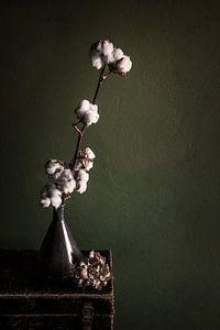 Stilleben mit Baumwollpflanze von Ellen Gerrits