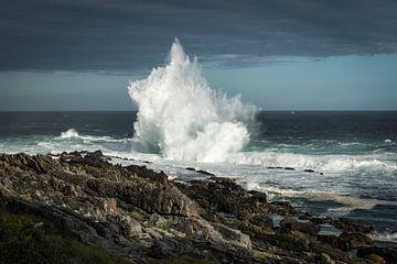Golven beuken tegen de rotsen aan de rand van de zee in Tsitsikamma, Zuid-Afrika van Wolfgang Stollenwerk