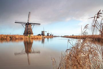 Windmühlen bei Kinderdijk von Paul Vergeer