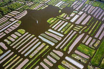 Luftaufnahme der Oosterdel-Inseln bei Broek op Langedijk von Frans Lemmens
