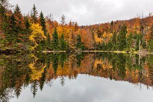 Een meer met herfstkleuren van Cor de Bruijn
