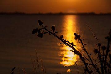 Zonsondergang aan de dijk naar Marken van Laura Weijzig