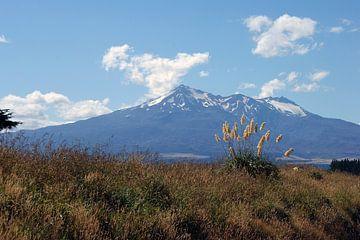 Tongariro von Jeroen van Deel