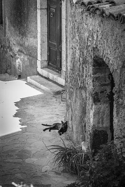 Taormina (Siciliaans: Taurmina)  Sicilië Italië. slapende kat fotoposter of  wanddecoratie van Edwin Hunter