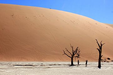Deadvlei, Namibië van stefan van hulten