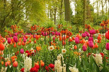 Keukenhof serie - bonte bloemenpracht van Wilma Overwijn