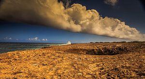 Wata Mula op Curacao van