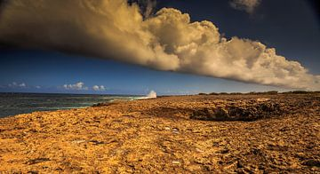 Wata Mula op Curacao van René Holtslag