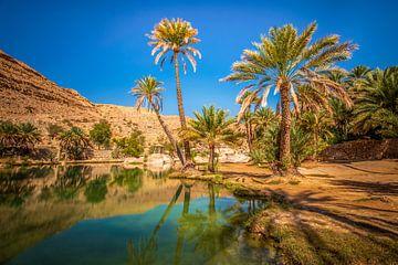 Oase in der Wüste von Antwan Janssen