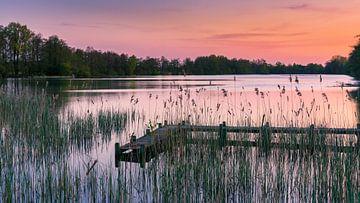 Sonnenuntergang Sassenhein, Haren, Groningen, Niederlande