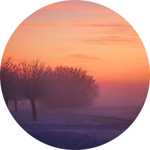Winterlandschap van Bob Bleeker